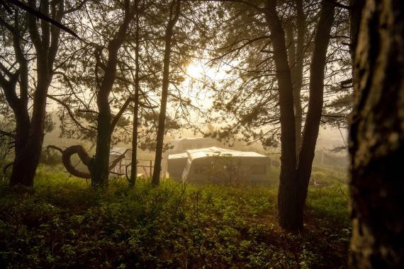 camping de lakens kamperen liguster zon natuur